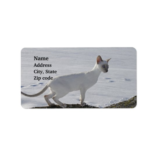 Snow Siamese Cat on Tree Branch, Lilac Point Label