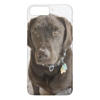 Snow Sprinkled Chocolate Lab iPhone 8 Plus/7 Plus Case