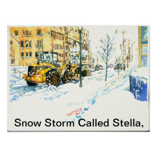 Snow Storm Called Stella, Poster