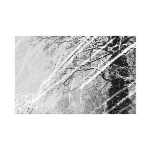 Snow Trails Stretched Canvas Print