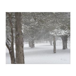 Snow Tree Canvas Print