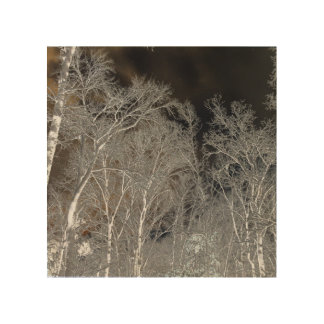 Snow Trees Inverted Wood Canvas