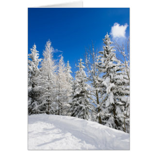 Snow trees under a clear blue sky greeting card