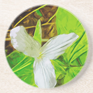 Snow Trillium a White Wildflower Abstract Coasters