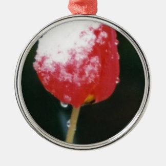 snow tulip Silver-Colored round decoration