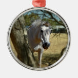 Snow White The Horse,_ Silver-Colored Round Decoration
