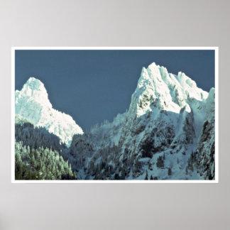 Snow-White Trees Poster