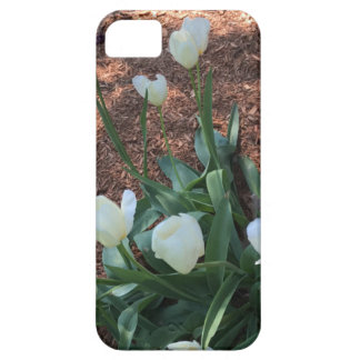 Snow white tulip type flowers in a garden iPhone 5 cases