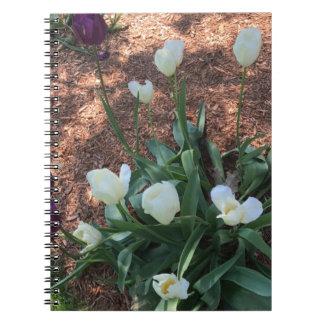 Snow white tulip type flowers in a garden spiral notebook