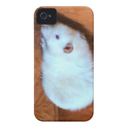 Snowball White Rat Blackberry Bold Case