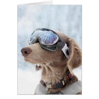 Snowboarding dog -dog winter -dog glasses card