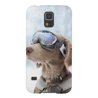 Snowboarding dog -dog winter -dog glasses galaxy s5 case