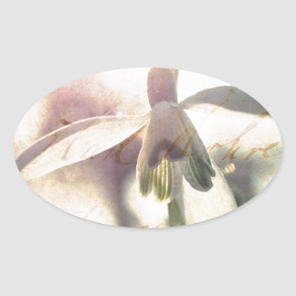 Snowdrop lyrical 01.01q oval sticker