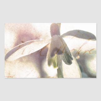 Snowdrop lyrical 01.01q rectangular sticker