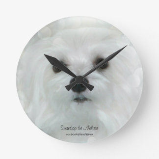 Snowdrop the Maltese Clock
