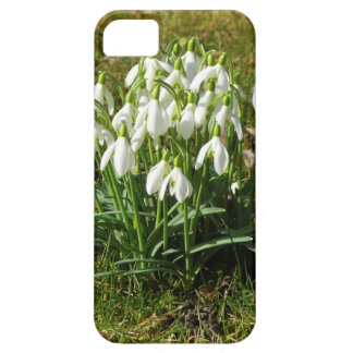 Snowdrops 02.2 (Schneegloeckchen) Case For The iPhone 5