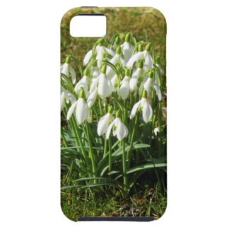 Snowdrops 02.2 (Schneegloeckchen) Tough iPhone 5 Case