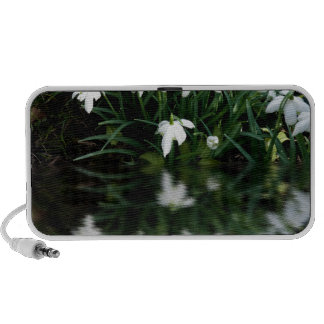 Snowdrops in reflection iPhone speaker