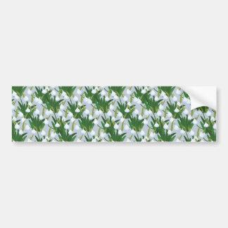 snowdrops pattern bumper sticker