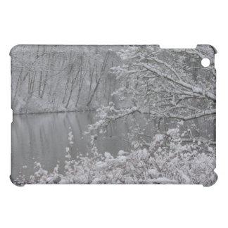snowed river iPad mini cases