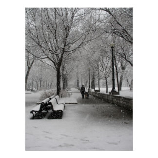 Snowfall in Montreal, Quebec Poster