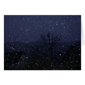 Snowfall Lit on a Dark Winter Night Card