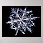 Snowflake 9 print