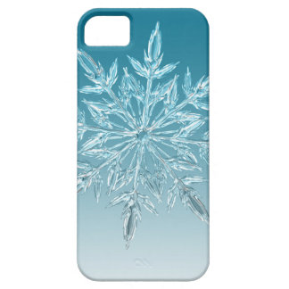 Snowflake Crystal iPhone 5 Cases