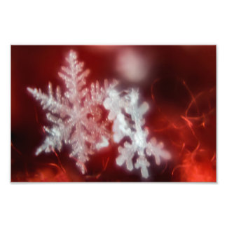 SNOWFLAKE ON A RED SCARF by Michelle Diehl Photo Print
