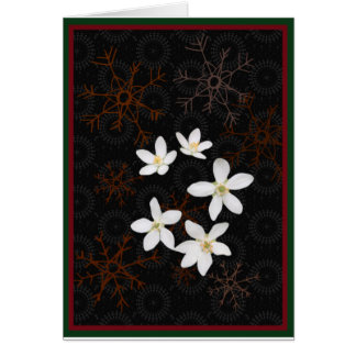 Snowflakes and white Christmas flowers Card