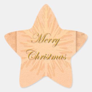 Snowflakes n vintage Christmas snow Star Sticker