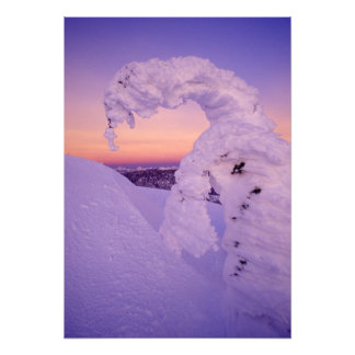 Snowghost in the Whitefish Range at Twilight Photographic Print