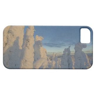 Snowghosts at sunset at Whitefish Mountain 2 Case For The iPhone 5