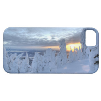 Snowghosts at sunset at Whitefish Mountain Barely There iPhone 5 Case