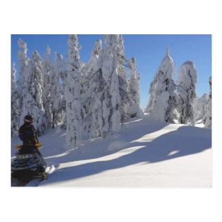 Snowmobiler Winterscape Postcard