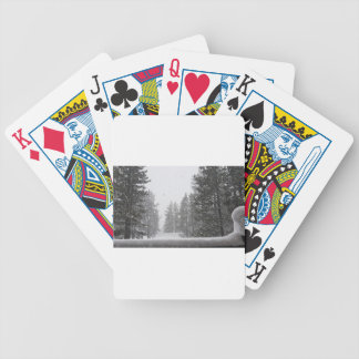 snows bicycle playing cards