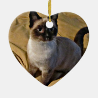 Snowshoe Kitten Gifts Ceramic Ornament