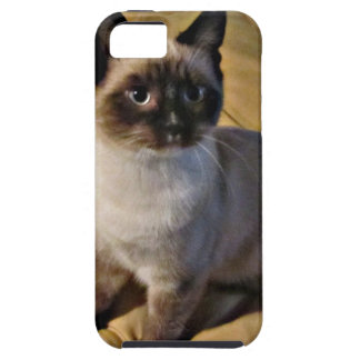 Snowshoe Kitten Gifts Tough iPhone 5 Case