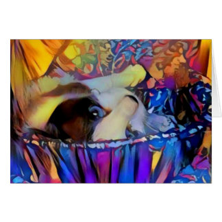 Snowshoe Purple Sunrise Kitty Card