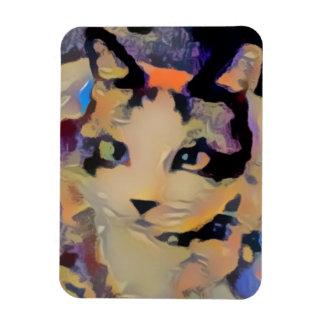 snowshoe stunning kitty magnet