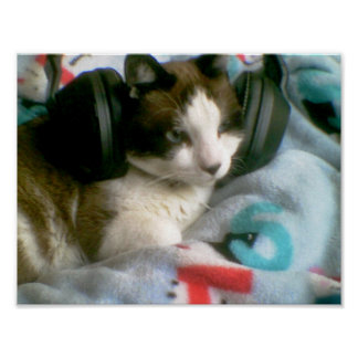 snowshoe the music critic kitty poster