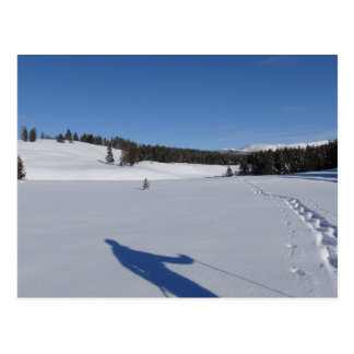 Snowshoeing in Yellowstone National Park Postcard