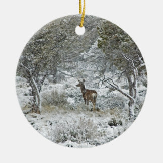 Snowstorm Double-Sided Ceramic Round Christmas Ornament