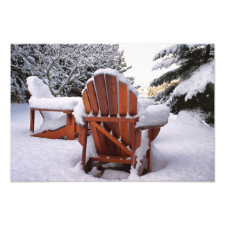 Snowy Adirondack Chairs in Winter Photo