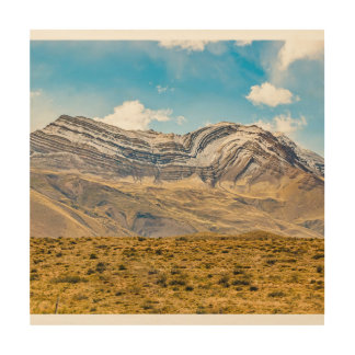 Snowy Andes Mountains Patagonia Argentina Wood Wall Art