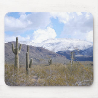 Snowy Arizona Day Mouse Pads