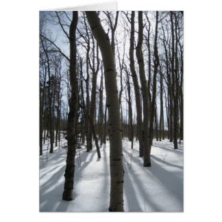 Snowy Aspens Note Card