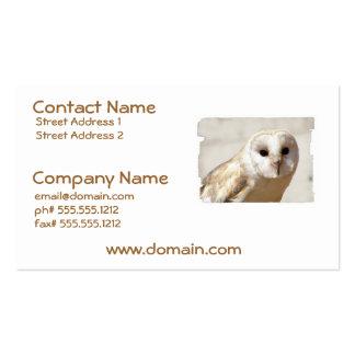 Snowy Barn Owl  Business Cards