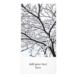 Snowy branch photo cards