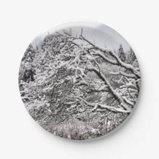 "Snowy branches 7"" Paper Plate"